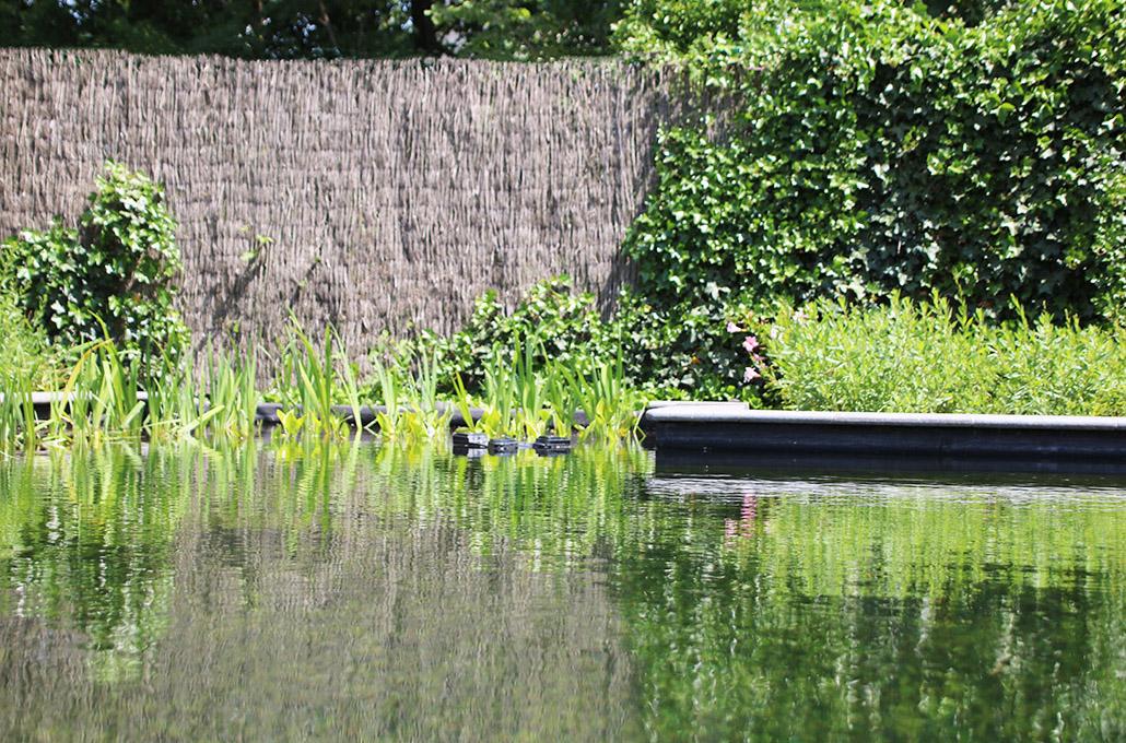 Pro Green - Tuinen en zwemvijvers