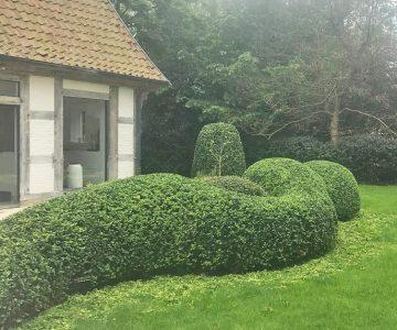 Pro Green - Tuinen