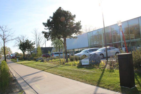 Pro Green - Bedrijfstuin Volvo